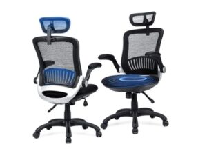 Ergousit Mesh Ergonomic Office Chair Desk Chair