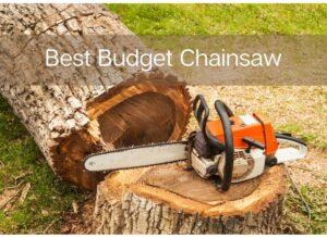 Best Budget Chainsaw