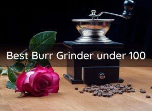 Best Burr Grinder under 100
