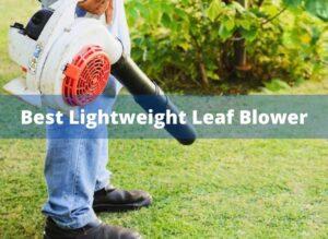 Best Lightweight Leaf Blower