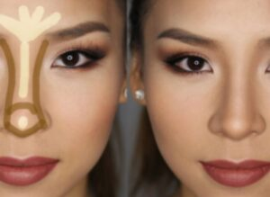 Best Nose contour Brushes