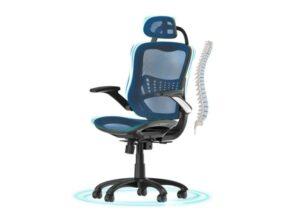 Komene High Back Adjustable Office Chair Ergonomic Desk Chair