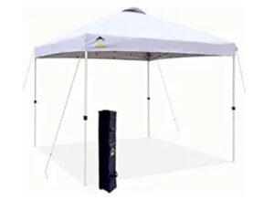Crowns Shades 10x10 Pop up Canopy Outside Canopy