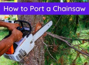 How to Port a Chainsaw