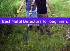 best metal detectors for beginners