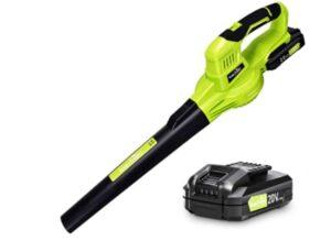 Snapfresh 20V cordless leaf blower